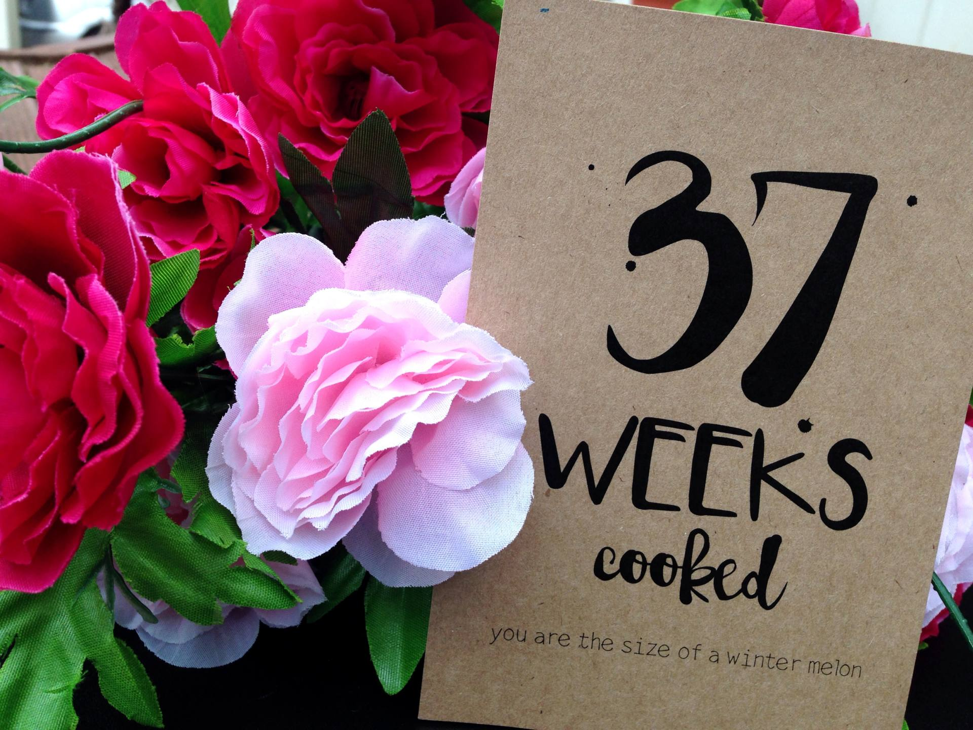 Thirty Seven Weeks Pregnant
